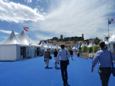 Blue Efficience à Cannes